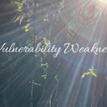 Vulnerability  by Cathy Fyffe
